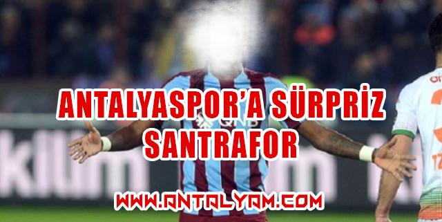 Antalyaspor'a sürpriz santrafor