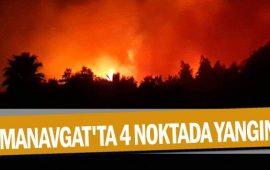 Manavgat'ta 4 noktada yangın